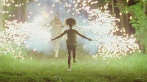 An image from Beasts of the Southern Wild