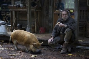 An image from Pig